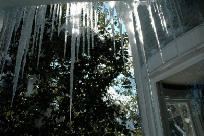 icicles 4.jpg